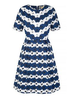 Daisy Stripe Print Day Dress