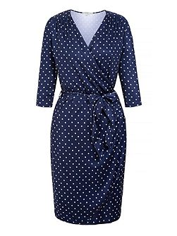 Daisy Print Long Sleeve Wrap Dress