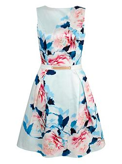 Rose Print Satin Party Dress