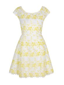 Yumi Floral Organza Skater Dress