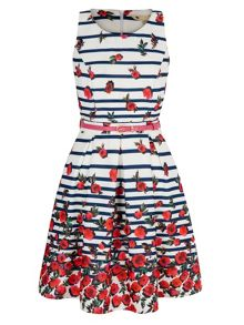 Yumi Stripe Floral Print Skater Dress