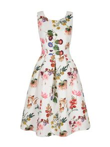 Yumi Botanical Floral Print Party Dress