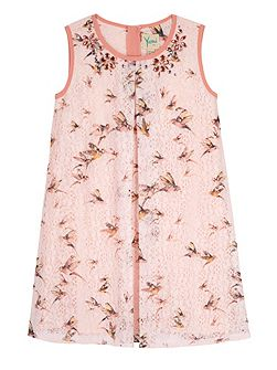 Girls Bird Print Lace Shift Dress