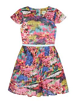 Girls Meadow Print Pleated Dress