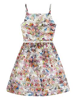 Girls Floral Stripe Organza Dress
