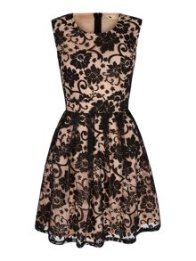 Baroque Sheer Contrast Dress