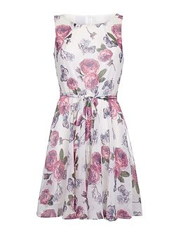 Rose Print Day Dress