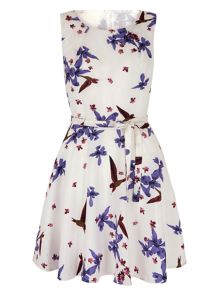 Mela Loves London Floral and Bird Print Occasion Dress
