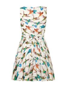 Yumi Hummingbird Print Day Dress