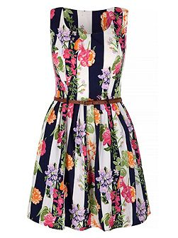 Floral Stripe Print Skater Dress