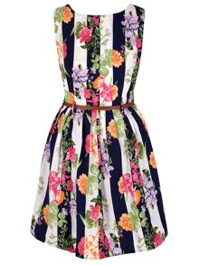 Yumi Floral Stripe Print Skater Dress