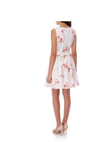 Yumi Rose Print Skater Dress