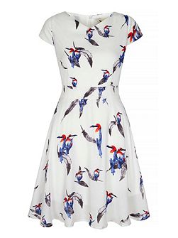 Tropical Bird Print Day Dress
