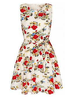 Wildflower Print Skater Dress