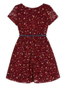 Uttam Bow Print Lace Skater Dress
