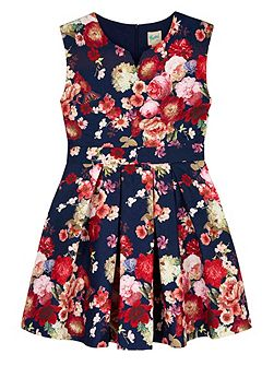 Antique Floral Print Skater Dress