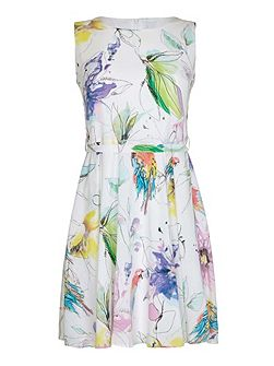 Painted Tropical Print Day Dress