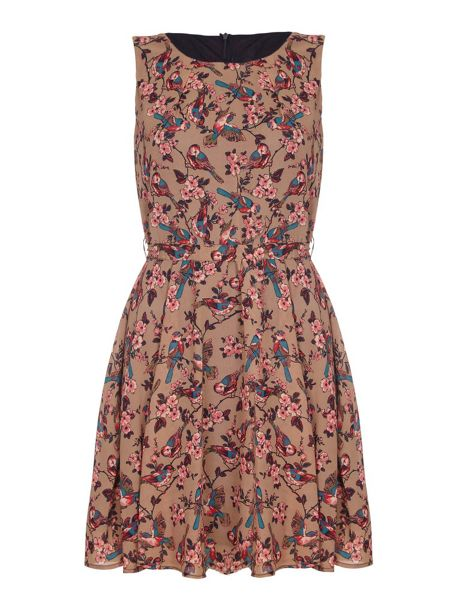 Mela London Brown Bird & Blossom Printed Dress