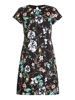 Black Shift Dress With Floral Bird Print