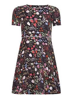 Floral Embroidered Short Sleeve Dress