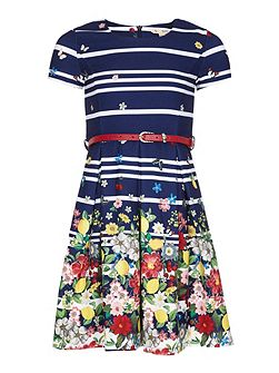 Floral Stripe Belt Dress