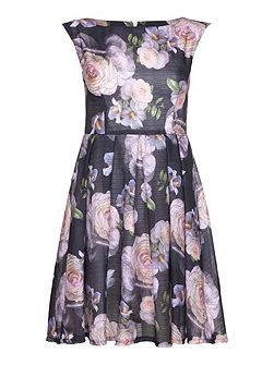 Antique Floral Skater Dress