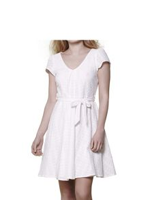 Yumi V-Neck Embroidered Dress
