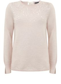 Mint Velvet Powder Sequin Detail Knit