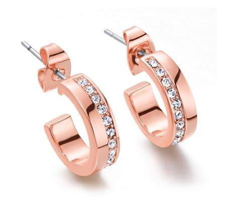Kaytie Wu Rose gold Line Crystal Earrings