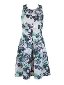 Closet Muse Floral Scuba Dress