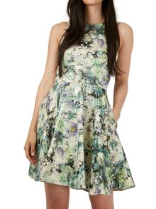 Almari Gold Floral Skater Dress