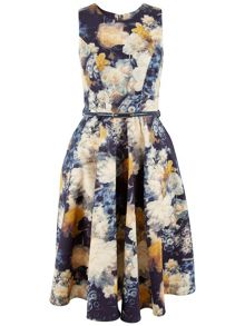 Closet Floral A-Line Panel Dress