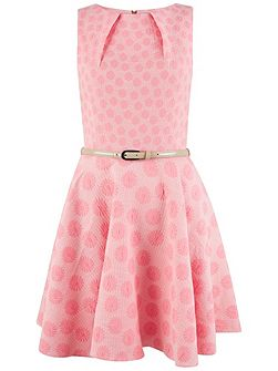 Pink Daisy Floral Belted Skater Dress