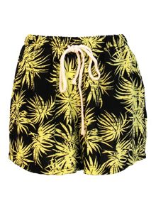 Palm Tree Print Shorts