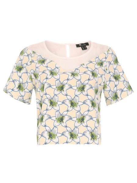 Cutie Chiffon panel top