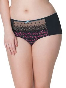Curvy Kate Daydreamer brief