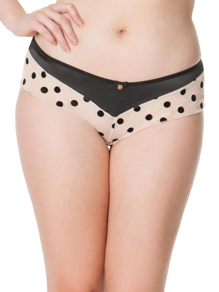 Curvy Kate Scantilly showtime brief