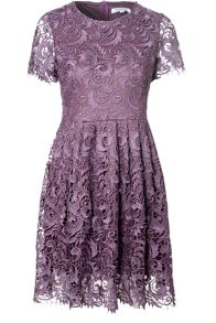 True Decadence Lace Skater Dress