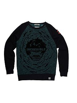 Boys Incredible Hulk Sweatshirt