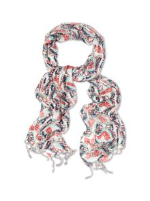 Wow Butterfly Scarf