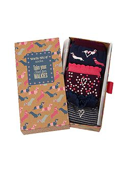 Sausage Dogs Socks In A Box