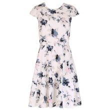 Blue Vanilla Cap Sleeve Floral Swing Dress