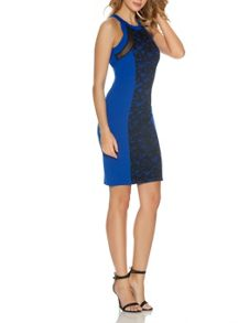 Quiz Royal Blue Lace Front Panel Dress
