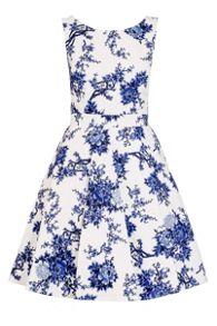 Quiz White China Print Skater Dress