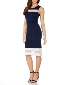 Quiz Navy And Cream Mesh Bodycon Dress
