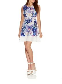 Quiz Cream And Blue Flower Print Flippy Dress