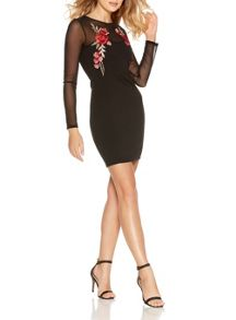 Quiz Black Flower Embroidered Mesh Sleeve Dress