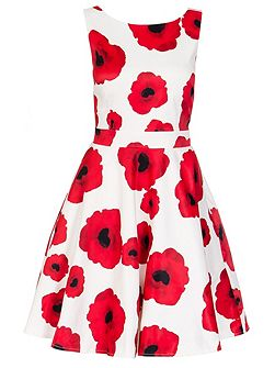 Cream Poppy Print Satin Dress
