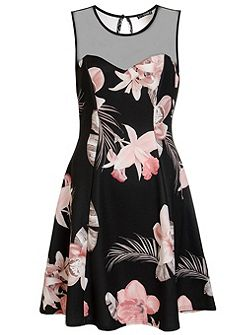Black Flower Print Mesh Flippy Dress