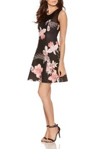 Quiz Black Flower Print Mesh Flippy Dress